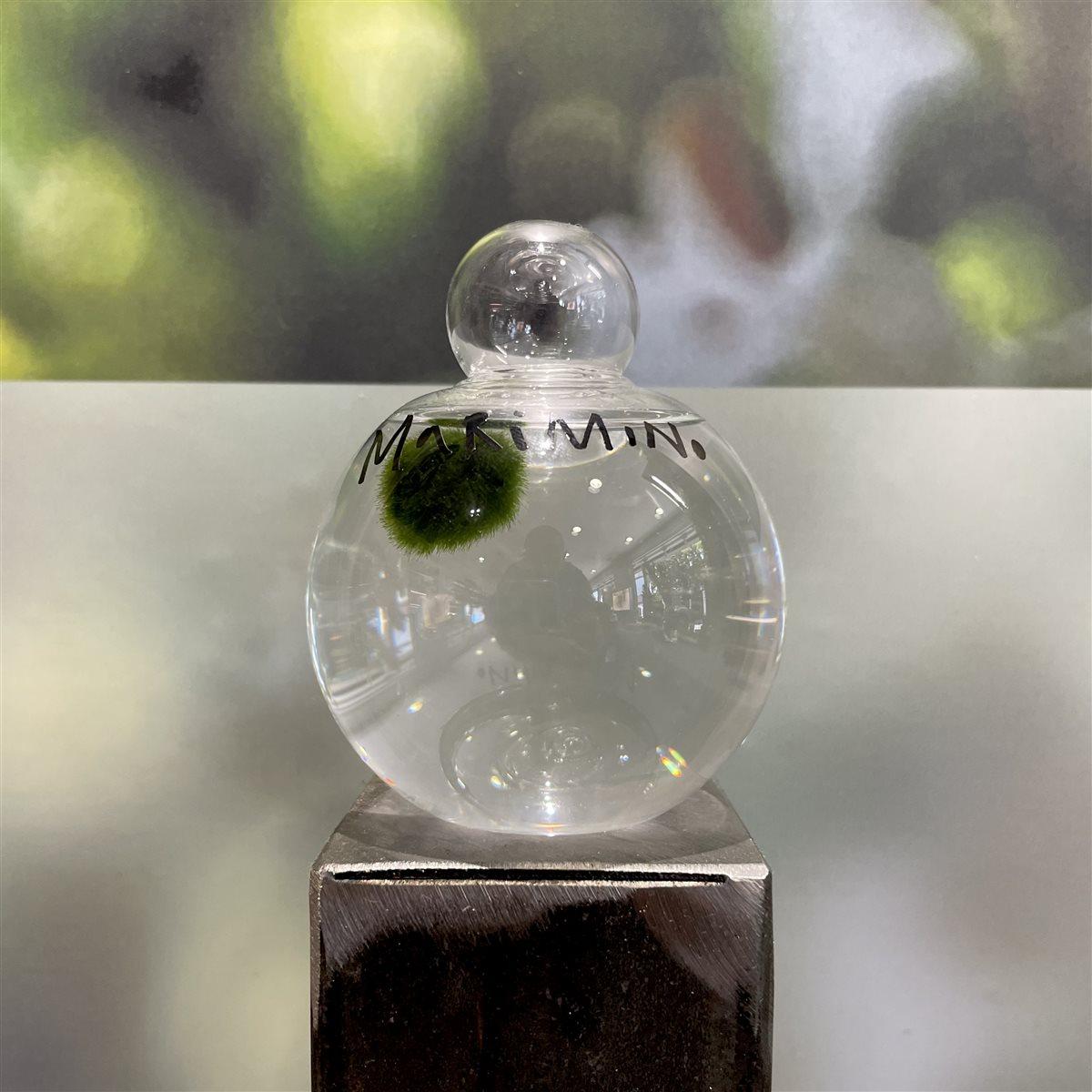 Medium Glass Sphere